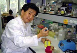 วิจัยกินเห็ดหลินจือแดงรักษาโรคความดันโลหิตสูง ลดไขมันอุดตันในเส้นเลือด