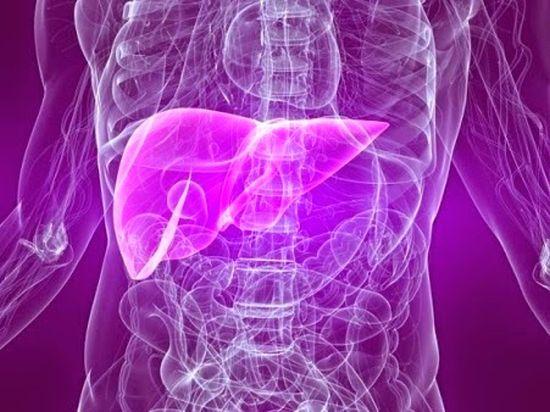 กินสมุนไพรเห็ดหลินจือแดง รักษาโรคตับอักเสบ ตับแข็ง มะเร็งตับ ได้ไหม